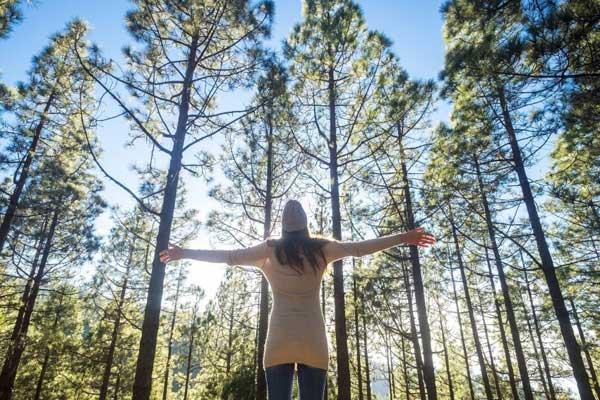 الطبيعة علاج مجاني وأكثر فاعلية للاكتئاب