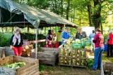 عائلات هولندية تنشئ مزرعة جماعية عضوية لمواجهة التغير المناخي