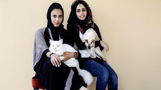 مقهى للقطط في دبي يأمل في إيجاد منازل جديدة لإيوائها
