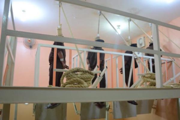 تنفيذ أحكام إعدام بمدانين بالإرهاب في العراق