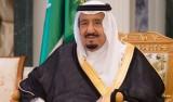 من هم أعضاء اللجنة التي شكلها الملك سلمان؟