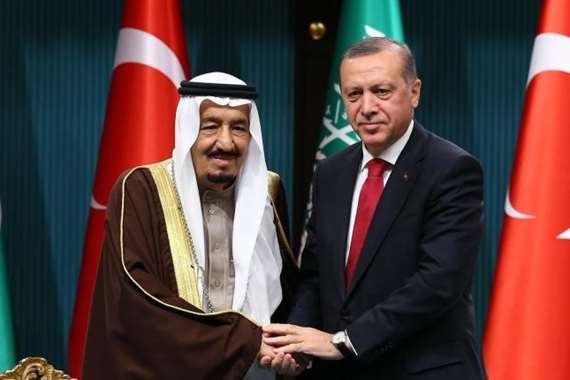 لقاء سابق بين الملك سلمان والرئيس التركي