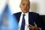 مؤتمر وطني حول ليبيا قد يمهد الطريق لاجراء انتخابات