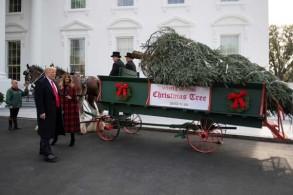 الرئيس الأميركي دونالد ترمب والسيدة الأولى ميلانيا في البيت الأبيض في واشنطن بتاريخ 19 نوفمبر 2018