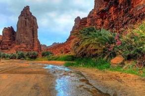 مشروع اقتصادي سعودي يدعم السياحة والتنوع الاقتصادي
