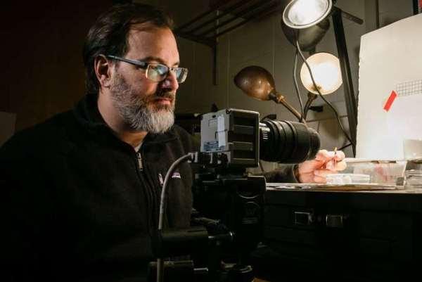 البروفيسور اندرو سواريز عضو فريق العلماء الذين درسوا سرعة النملة