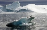 القطب الجنوبي يفقد جليده بوتائر متسارعة