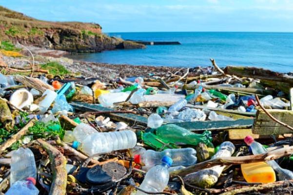 البلاستيك يتسبب في اختناق الأسماك وغيرها من المخلوقات البحرية ويدمر بيئتها