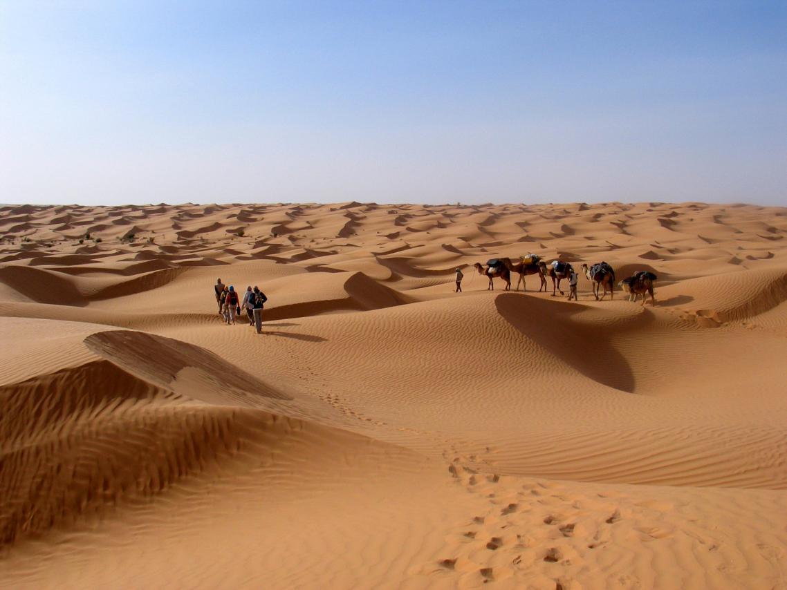 سياح غربيون خلال جولة في صحراء توزر جنوب تونس - أرشيفية