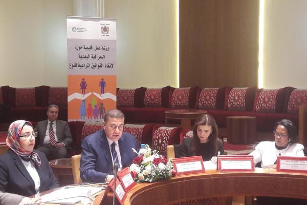 جانب من أشغال الورشة الإقليمة حول المراقبة البعدية لإنفاذ القوانين المراعية للنوع بمجلس النواب المغربي