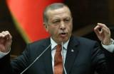 كاتبة أسترالية: أردوغان معلم السياسة الرخيصة !