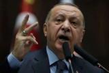 نيوزيندا تستعد للحسم مع أردوغان