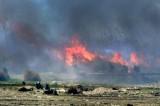 قوات سوريا الديموقراطية تسيطر على مخيم داعش في الباغوز