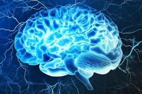 الإنسولين يقي خلايا الدماغ من الأمراض التنكسية