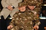 قائد الجيش الجزائري يدعو لتطبيق المادة 102 من الدستور