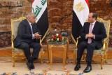 السيسي يدعو المجتمع الدولي لمنع انتقال عناصر داعش لمناطق أخرى