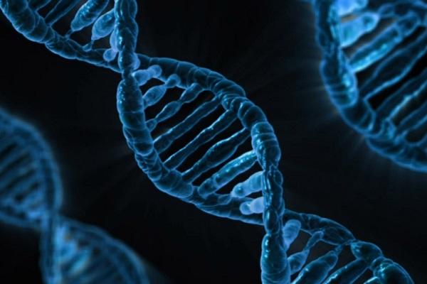 تحرير الجينات- صورة تعبيرية
