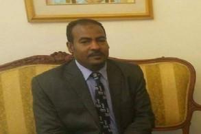 محمد عز الدين رئيس مركز النيل للدراسات الأفريقية