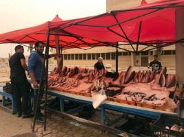 باعة للأسماك في وسط طرابلس