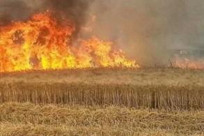 حرائق مزارع الحنطة في عدد من مناطق العراق