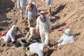 عمليات استخراج رفات الايزيديين ضحايا داعش في مدينة سنجار بمحافظة نينوى الشمالية