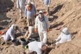 الأمم المتحدة: أكملنا استخراج الرفات من 12 مقبرة جماعية في كوجو الايزيدية
