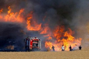 حرائق مزارع القمح والشعير في العراق