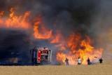 بغداد: الحرائق أكلت 1185 دونما من القمح والشعير.. والأمن يحقق!