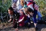 71 مليون نازح ولاجئ في العالم في أواخر 2018