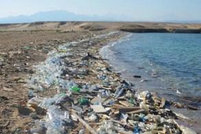 أحد الشواطئ في لبنان