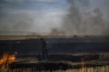 قتلى في حرائق تجتاح حقولاً للقمح في شمال شرق سوريا