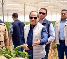 السيسي مفتتحا ١٣٠٠ من الصوب الزراعية على مساحة ١٠ ألاف فدان في إطار المرحلة الثانية من قطاع محمد نجيب للزراعات المحمية