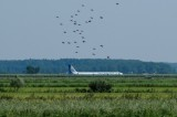 إشادة روسية بطيار