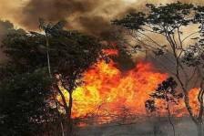 الرئيس البرازيلي: حرائق الأمازون لا تستوجب عقوبات على بلادنا