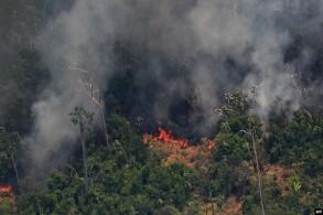 جانب من حرائق غابات الأمازون