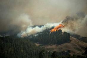 تصاعد ألسنة النار والدخان في مونتانا إلتا في جزيرة كناريا الكبرى بتاريخ 18 أغسطس 2019