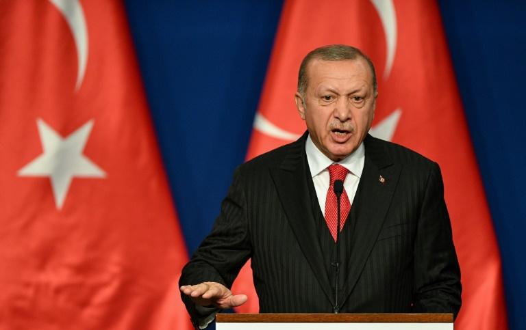 اردوغان: قمة رباعية حول سوريا مع روسيا وفرنسا والمانيا