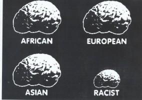 تيار العنصرية العلمية يتحول مطلع القرن الـ 20