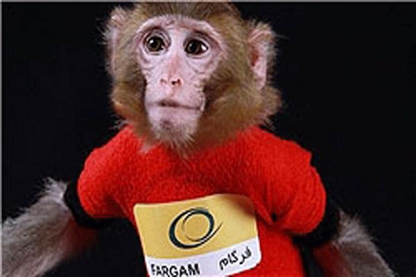القرد الفضائي الايراني فرغام