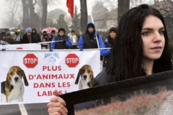 تظاهرة في فرنسا تطالب بوقف استخدام الحيوانات في التجارب العلمية