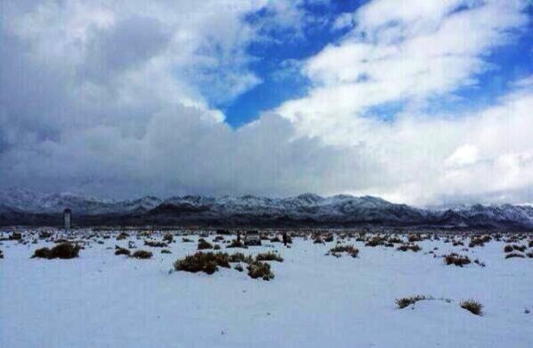 الثلوج في جبل اللوز بتبوك