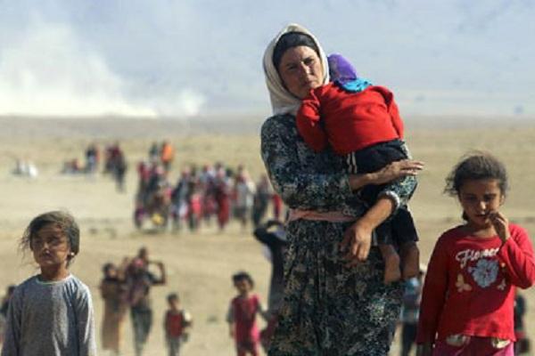 نازحون ايزيديون في شمال العراق