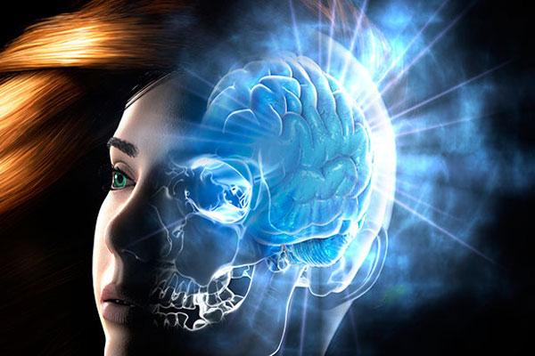 دراسة تلحظ علاقة بين هرمون الإستروجين ونمو خلايا الدماغ