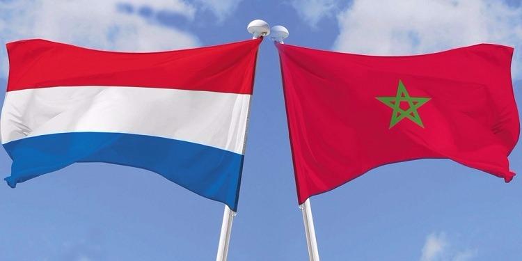 هولندا: استدعاء المغرب لسفيره غير مفهوم وغير مجدٍ