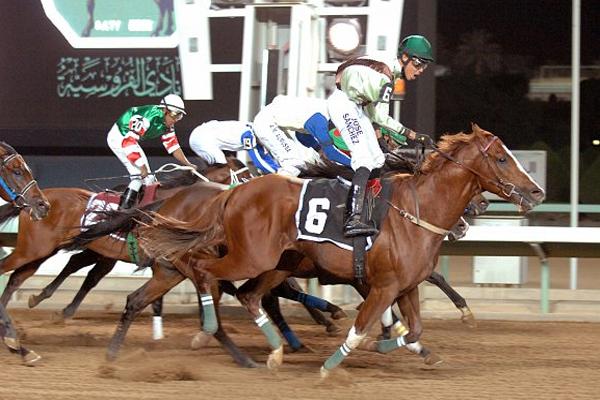 جانب من سباق الفروسية بميدان الملك عبدالعزيز للفروسية بالجنادرية