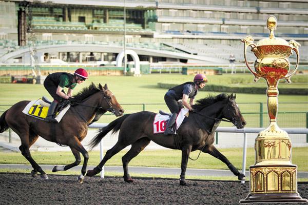 خيول الإمارات تسعى إلى حصد اللقب الـ11 لها في كأس دبي العالمي للخيول