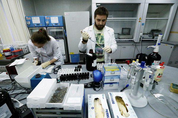 برلمان روسيا يعتبر الحث على تناول المنشطات