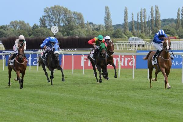 من سبـاق دبي الدولي للخيول العربية الماضي في نيوبري