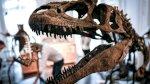 مذنب لا كويكب تسبب بانقراض الديناصورات بحسب دراسة