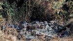 مذبحة مروّعة في تيغراي تترك أسئلة كثيرة